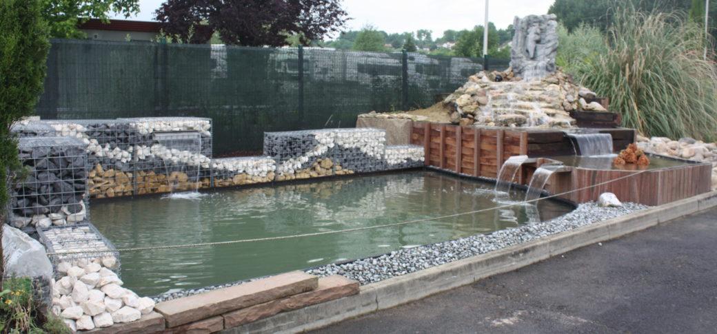 bassin a koi