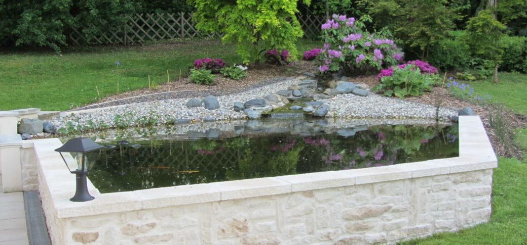 bassin de jardin à carpe koi