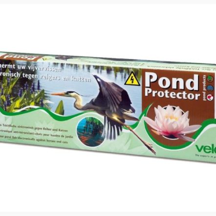 Protection du bassin