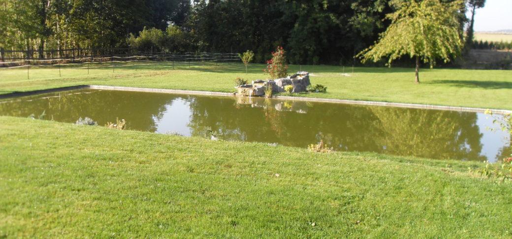 bassin entretenu par aquakoi